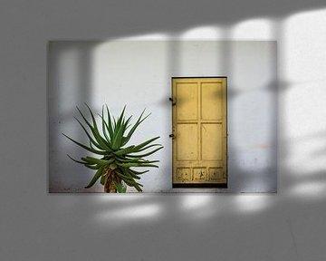 deur von Peter van Mierlo