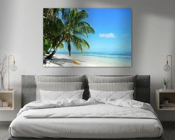 Bounty island beach van iPics Photography