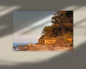 Abends an der Küste der Ostsee auf der Insel Poel von Rico Ködder