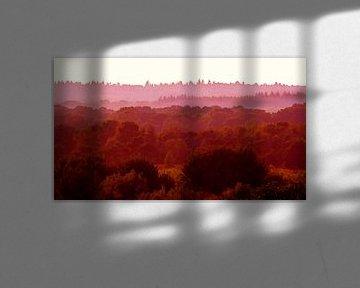 Red-Fields 2 (Paysage en tons de rouge) sur Caroline Lichthart