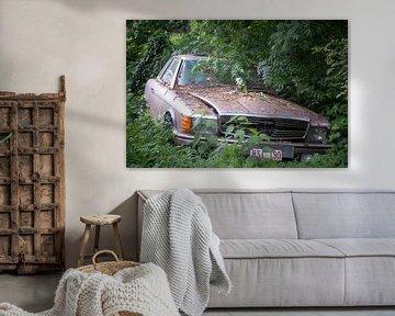 Mercedes im Wald. von Roman Robroek