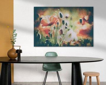 Poppy art von Francois Debets
