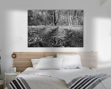 Beekje in het bos von Elroy Spelbos