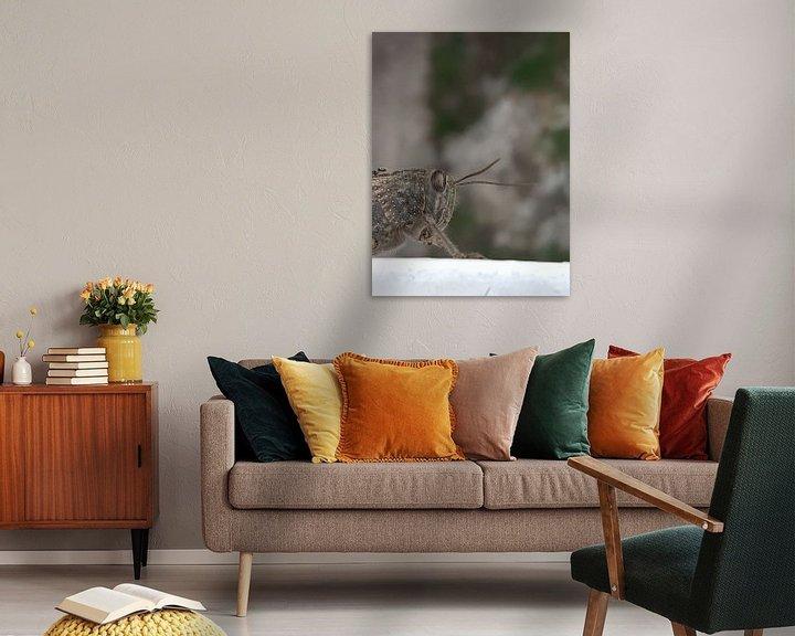 Beispiel: sprinkhaan von Joelle van Buren