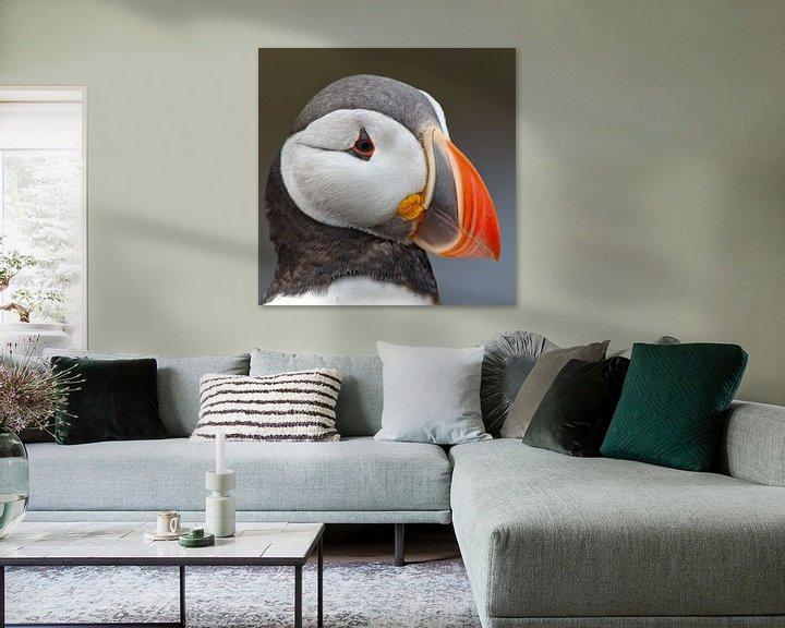 Sfeerimpressie: Portret van een papegaaiduiker van Menno Schaefer