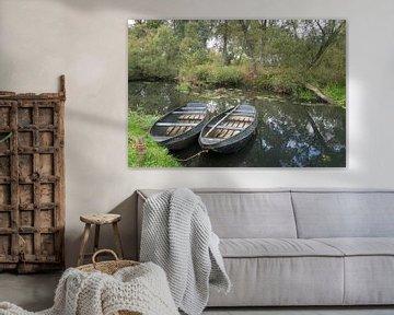 Bootjes in de Biesbosch