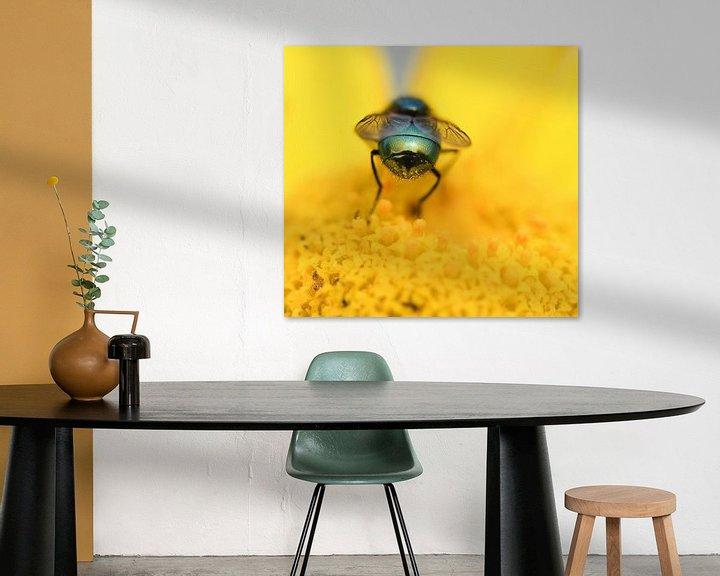 Beispiel: Bottle fly on flower von Ingrid Ronde