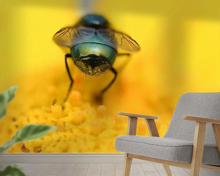 Beispiel fototapete: Bottle fly on flower von Ingrid Ronde