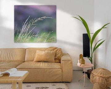 Wuivend gras von Ingrid Ronde