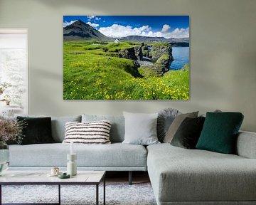 De kust van Arnarstapi, IJsland von Joep de Groot