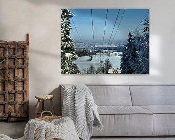 Winter van P van Beek