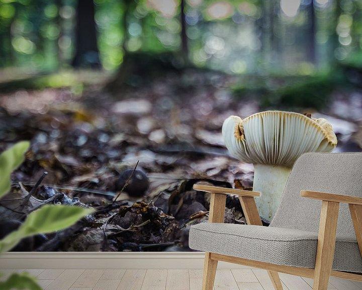 Impression: Autumn in the forest sur Martzen Fotografie