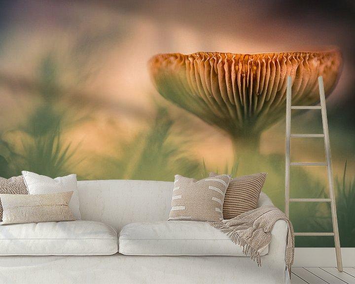 Sfeerimpressie behang: Het herfstgevoel van Martzen Fotografie