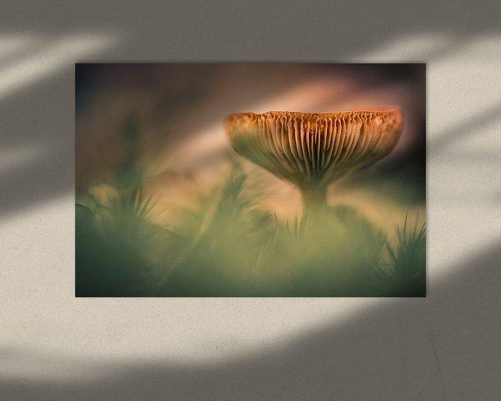 Sfeerimpressie: Het herfstgevoel van Martzen Fotografie