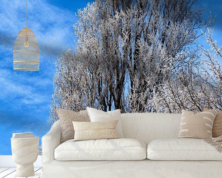Impression: Besneeuwde boomtoppen: winter in Nederland. sur Paul Teixeira