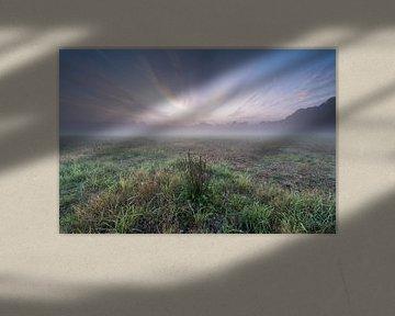 Purple Sky van Davy Sleijster