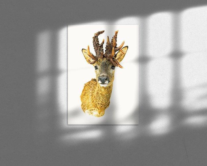 Sfeerimpressie: Rariteitenkabinet Dier_01 van Marielle Leenders