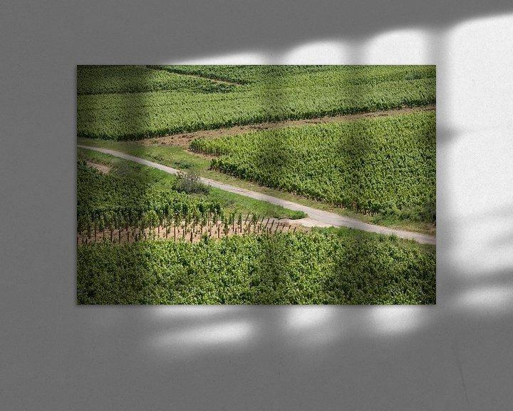 Sfeerimpressie: Zigzag door de wijngaard van Jim van Iterson