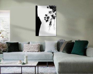 Eule in Silhouette von Carol Thoelen