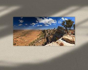 Isalo hoogvlakte panorama van Dennis van de Water