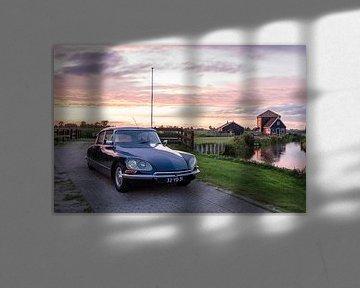 Citroën DS sur Sim Van Gyseghem