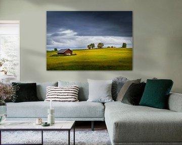 Herfst in Zweden van Hamperium Photography