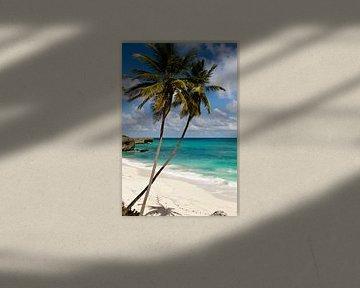 Karibikstrand van Christoph Schaible