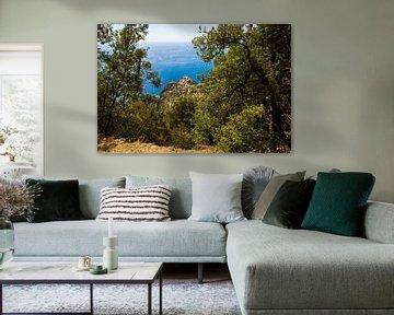Cinque Terre von Tess Groote