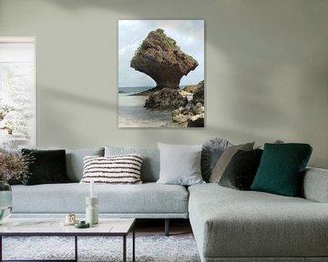 Rock shaped by the sea - Okinawa van Daniel Chambers