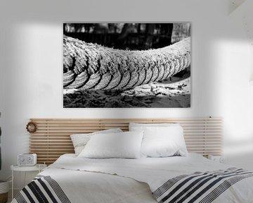touw von Eline Willekens