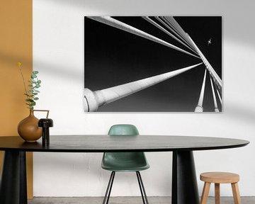 Brücke in Symmetrie, Linien und Möw von Marcel van Balken