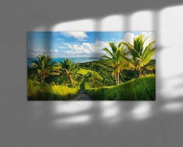 Sunset at Maunga Pu Hill, Aitutaki - Cook Islands sur Van Oostrum Photography