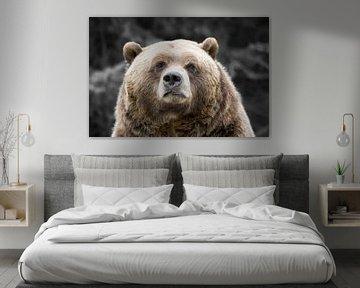 Grizzly van Renald Bourque