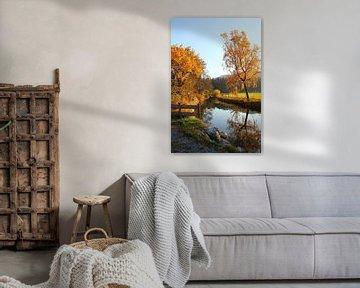 autumnal river van Susanne Bauernfeind