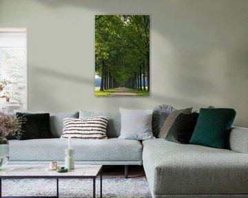 Gardens of Groeneveld
