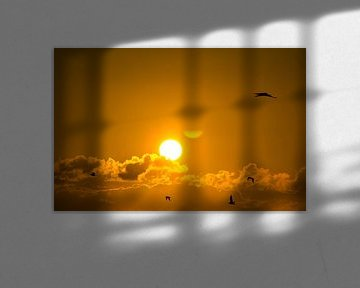 Rise and Shine little Birds van Ciska Heins