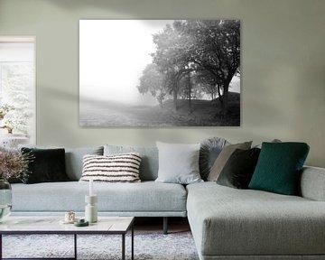 bomen in de mist  von Ilja Kalle