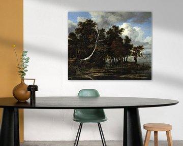 Jacob van Ruisdael. Eichen an einem See mit Wasserlilien
