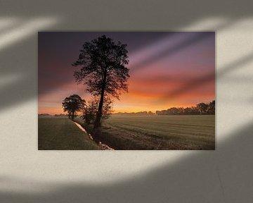 Ochtendrood geeft.... von Willem van Leuveren Fotografie