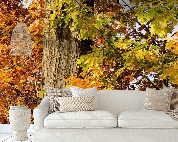 Impression: Gele en bruine herfstbladeren sur Jessica Berendsen