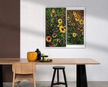 zonnebloemen in twee delen von Joke te Grotenhuis