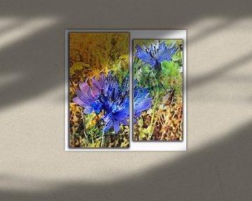 blauwe korenbloemen in 2 delen von Joke te Grotenhuis