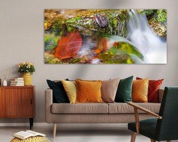 Mossman Gorge, Queensland - Australia von Van Oostrum Photography