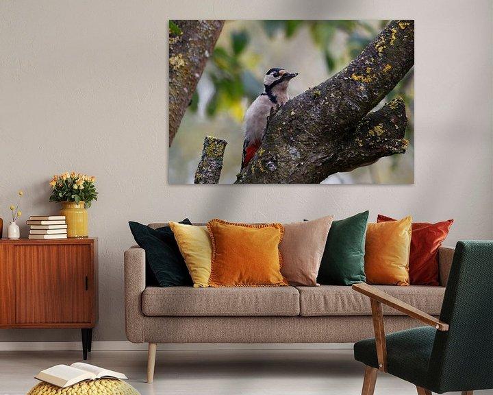 Sfeerimpressie: woodpecker van Erich Werner