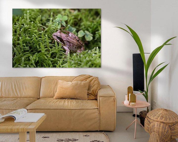 Sfeerimpressie: Forest frog van Erich Werner