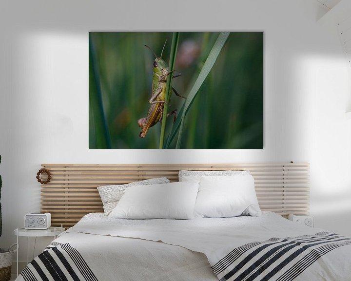 Sfeerimpressie: grasshopper van Erich Werner