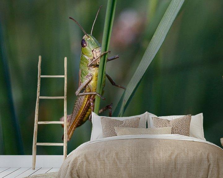 Sfeerimpressie behang: grasshopper van Erich Werner