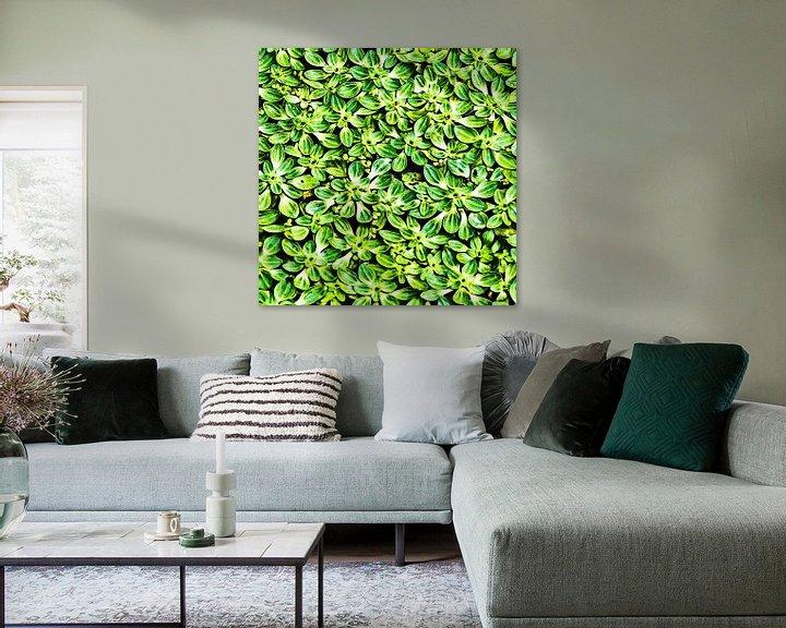 Sfeerimpressie: Waterplanten van Art by Jeronimo