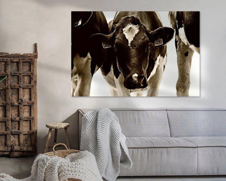 Beispiel: neugierige Kuh von Jessica Berendsen