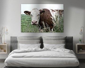 neugierige Kuh von Jessica Berendsen